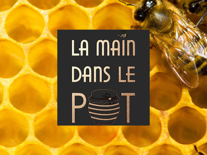 Logotype La main dans le pot